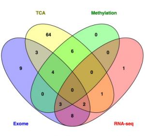 外显子组测序技术揭示幼年型粒单核细胞白血病的基因变异全貌