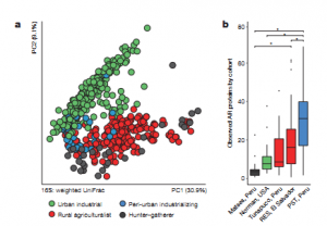 Interconnected microbiomes and resistomes in low-income human habitats