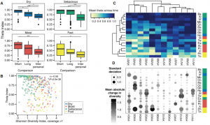 Temporal Stability of the Human Skin Microbiome
